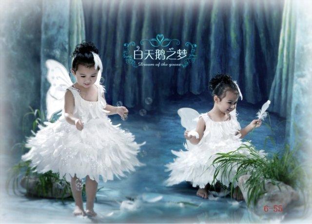 Girl BALLET TUTU DANCE DRESS PARTY DRESS style47