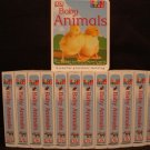Childrens Board Books Lot of 13 Baby Animals NEW