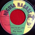 Big Youth - Facts Of Life / Medicine Doctor (1973)