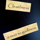 Cleanliness is Next to Godliness Magnet