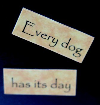 Every Dog Has Its Day Magnet