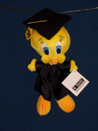 Graduation Tweety Bean Bag form WB Studio Store FREE SHIPPING