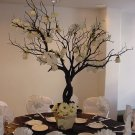 White Roses & Gerbera Daisy Manzanita Tree Wedding Centerpiece