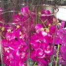 12 Piece Set Orchids Wedding Reception Table Centerpiece - Custom Made To Order