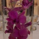 10 Piece Set - Orchids Glass Vase Wedding Reception Table Centerpieces - Custom Made To Order