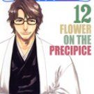 Bleach Vol. 12 [Japanese Edition]