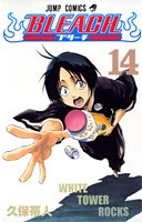 Bleach Vol. 14 [Japanese Edition]