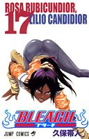 Bleach Vol. 17 [Japanese Edition]