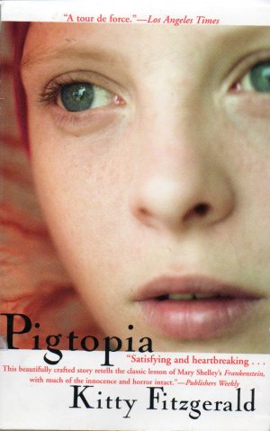 Pigtopia by Kitty Fitzgerald Irish Novel