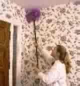 Big Wally Wall Brush Give cobwebs the brush off