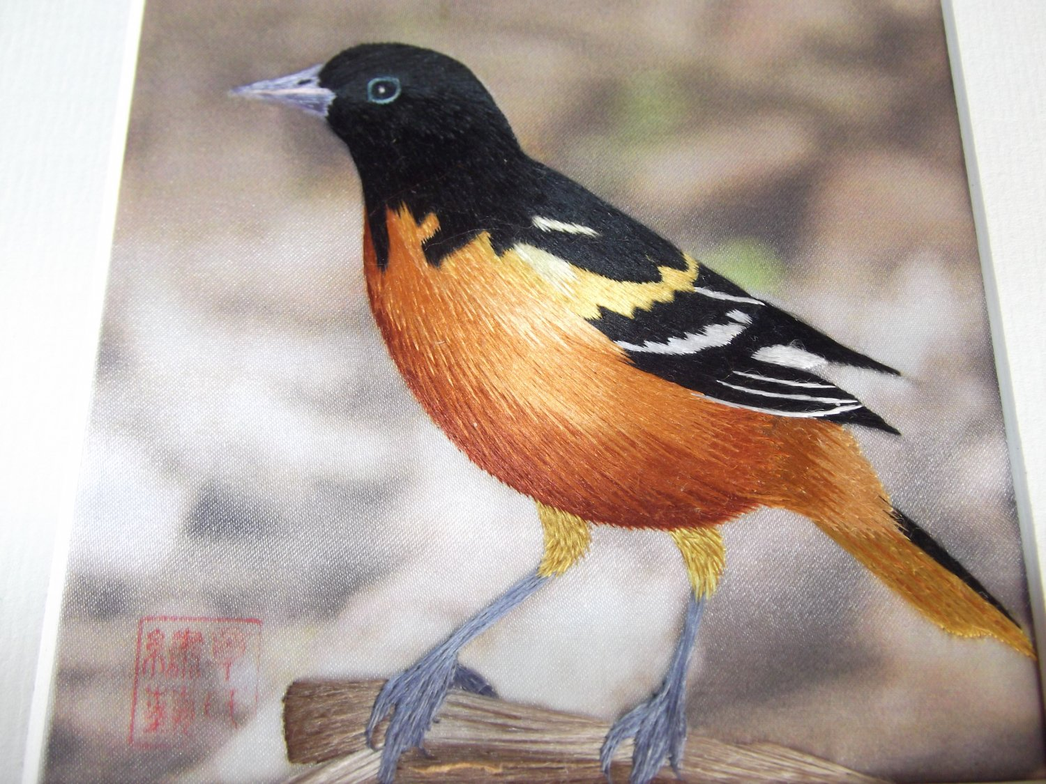 Orange Breasted Bird