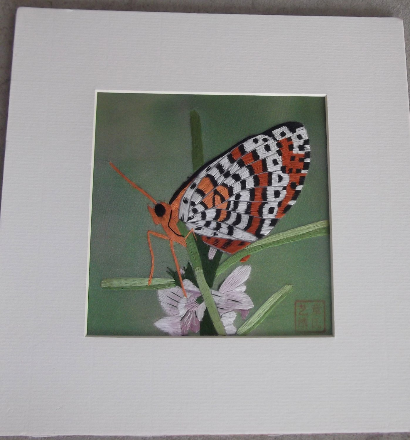No frame Butterfly