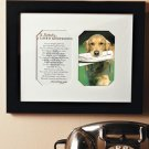 New Loving Memory Frame In Loving Memory of a Lost Pet