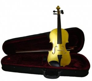 Crystalcello MV300GD 1/2 Size Gold Violin with Case