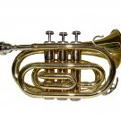 MERANO WD480 B Flat Gold Pocket Trumpet with Case