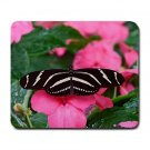 Black & White Butterfly 1 Large Mouse Pad