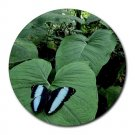 Sky Blue & Black Butterfly Round Mouse Pad