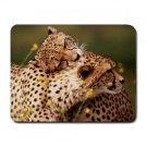 Cheetahs Small Mouse Pad