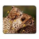 Cheetahs Large Mouse Pad