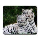 White Tigers Large Mouse Pad