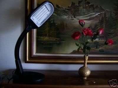 full spectrum daylight reading or sad sun light lamp. Black Bedroom Furniture Sets. Home Design Ideas