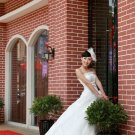 Luxurious Ivory Strapless Train Ball Gown Wedding Dress D60420