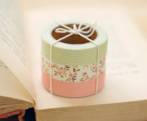 Fabric Tape 3 in 1 - Solid, Flower, Stripe