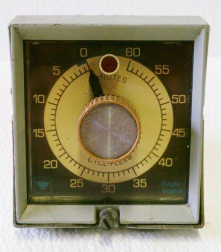 Eagle Signal HP56A6 Timer 0-60 Minute 120 V Cycl-Flex