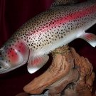 Rainbow Trout Sculpture