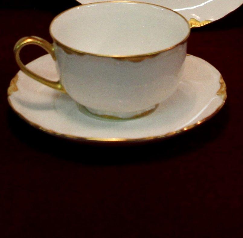 hutschenreuther porcelain china gilded cup saucer. Black Bedroom Furniture Sets. Home Design Ideas