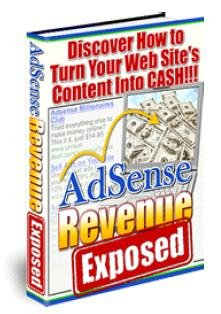 AdSense Revenue Exposed: Discover How to Turn Your Web Site's Content into Cash!!!