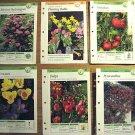 Basic Gardening Techniques 12 Cards Garden Tips Manuals