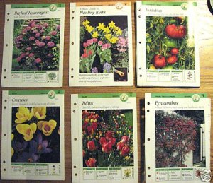 Basic Gardening Techniques 12 Cards Garden Tips Manuals