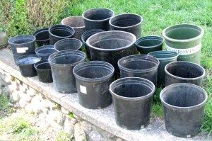 Plastic Trees Flowers Garden Decks 20 Planters Pots Lot