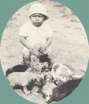 Vintage Photo TODDLER with LITTER of PUPPIES 1920s
