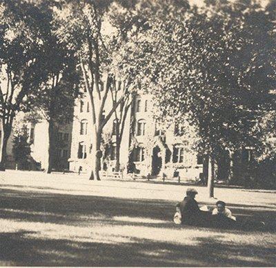 Vintage Photo LANDSCAPE Park circa 1900s