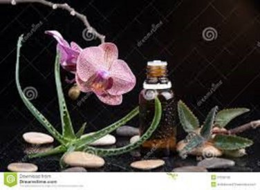 5 Thieves--Pure Organic Immunity and Virucidal Blend