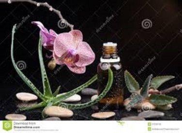 Syc Mystic Universal Energy, Health, And Wellness: LIZARD OIL: Pure Organic