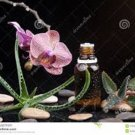 Organic HGH BOOSTER Serum, Growth Factor, Hormone Booster