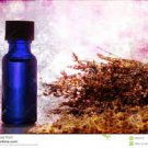 Extra-Strength Joint Support Essential Blend