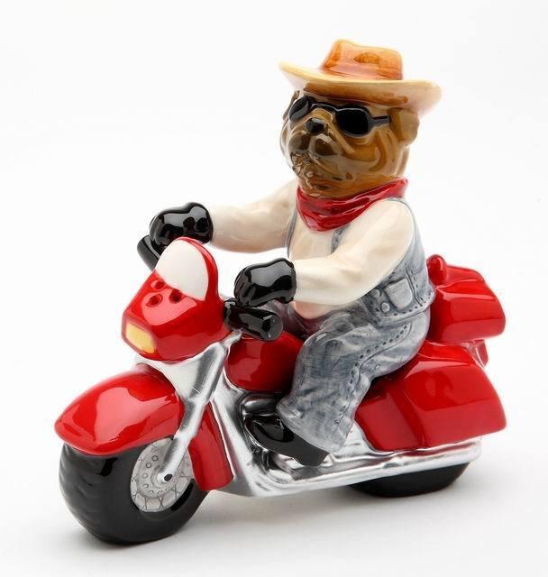 Bandit Dog driving Motorcycle Salt and Pepper