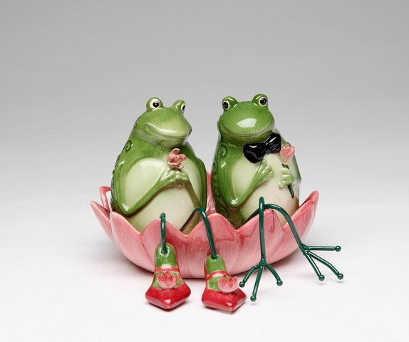 Boy and Girl Frog Couple in Lily Pad Salt and Pepper