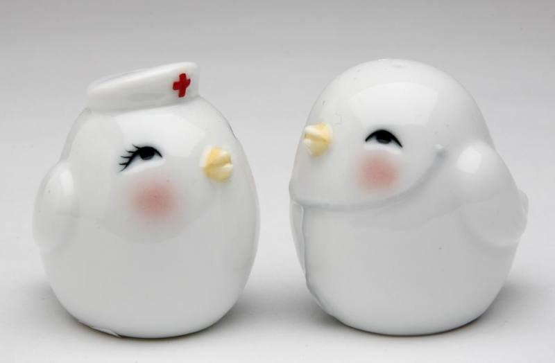 Hospital Doctor and Nurse Bird Salt and Pepper