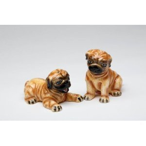 Brown Pug Dog Puppy Standing and Sitting Salt and Pepper