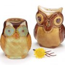 Whimsical Owl Couple Salt and Pepper.