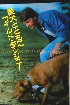 Michael J. Fox / Jackie Chan  clipping pinup 1987 : 87s8