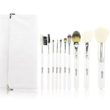 Professional 10pcs Makeup Brush Set with Case