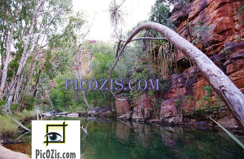 "VLA001201109 - Australia Outback - 20x30cm (8x12"")"