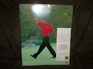 Tiger Woods autographed 16x20 UDA photo-Tiger Roars