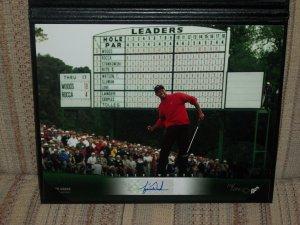 Tiger Woods LE autographed 8x10 UDA photo